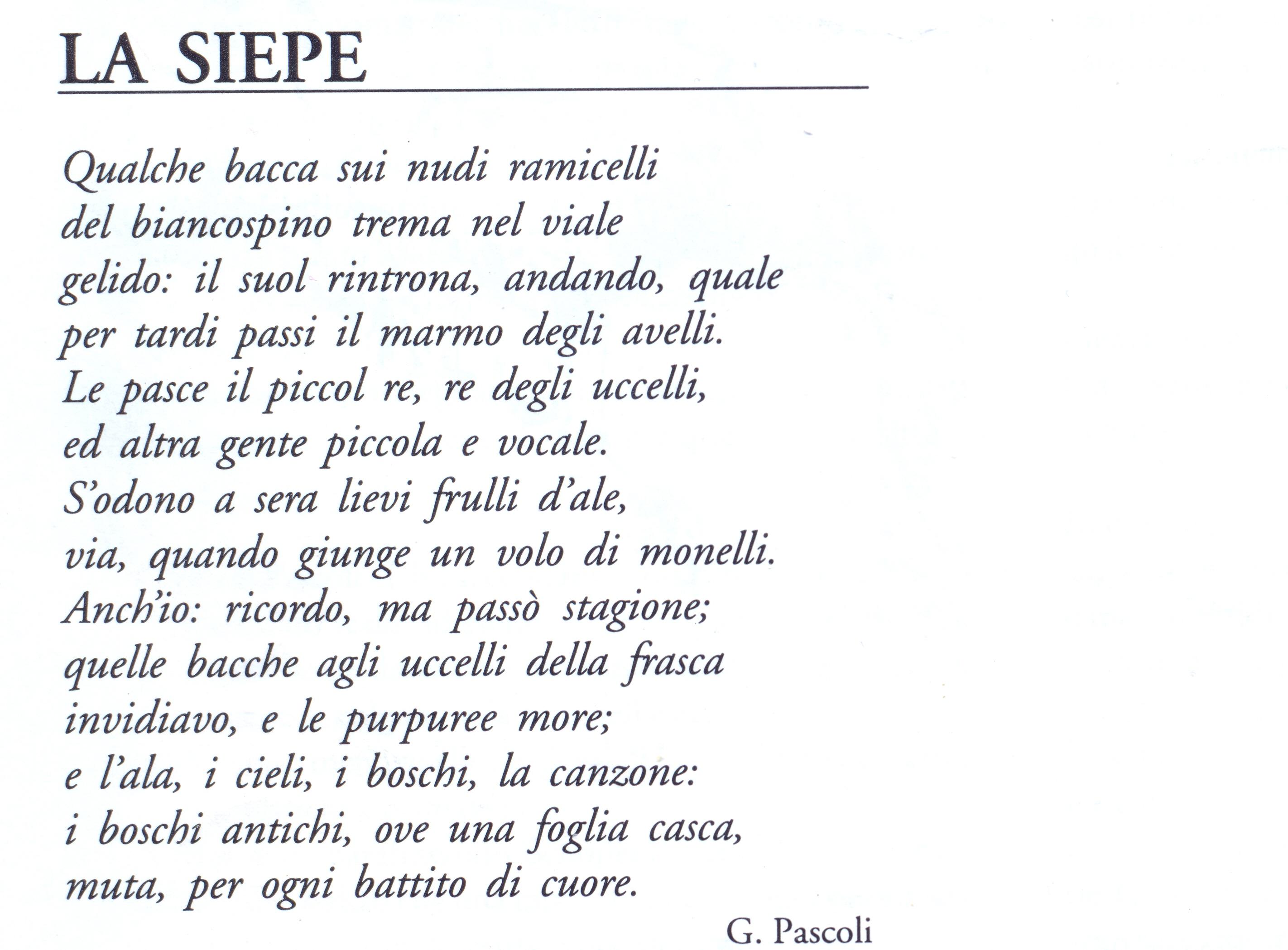 Commento Alla Poesia La Siepe Di Giovanni Pascoli Del Dott Prof