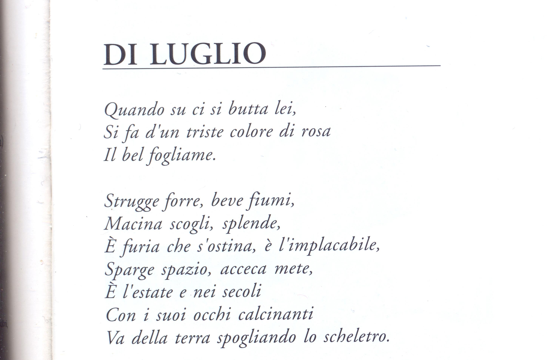 Eccezionale poesia:commenti | Il sillabario 2013 | Pagina 2 SJ77
