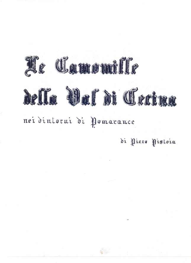 camomille0003